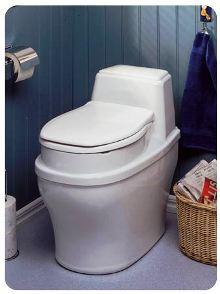 Выбираем средство для дачного туалета