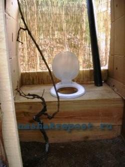 сидение туалета