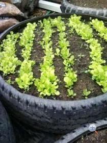 Поделки из шин для дачи и сада
