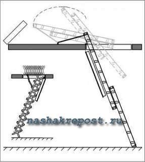схема раскладки чердачной лестницы