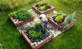 высадка растений для украшения дачи