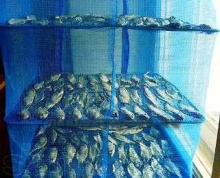 простая сушилка для рыбы своими руками