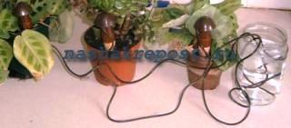 магазинские поливалки растений