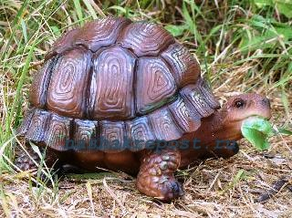 фигурка черепахи в саду