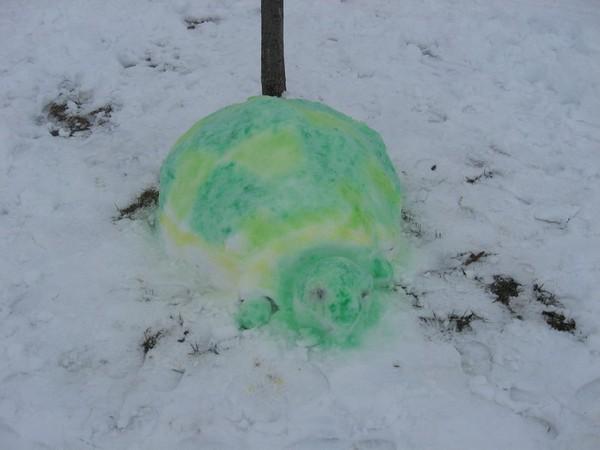 Снежная черепаха